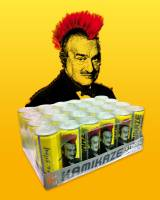 kamikaze-strong-energy-for-president-karel-schwarzenberg2s